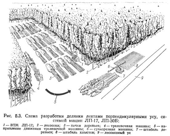Схемы разработки лесосек